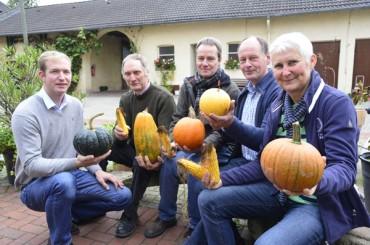 Der Sommer war zu nass: Qualitäts- und Ertragseinbußen in der Weizenernte