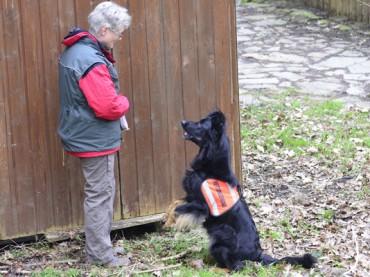 Ausbildung von Flächensuchhunden im Schwerter Elsebad