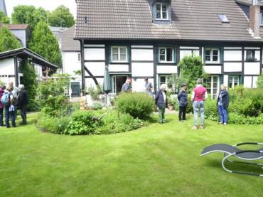 Garten Eden – Wo grüne Oasen zu einzigartigen Refugien werden
