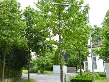 Kleine Feldstraße: Laterne leuchtet licht genug – Beschwerde abgewiesen