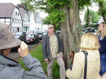 Grüne mit Gutachter vor Ort: Drei der fünf Kastanienbäume müssen nicht gefällt werden