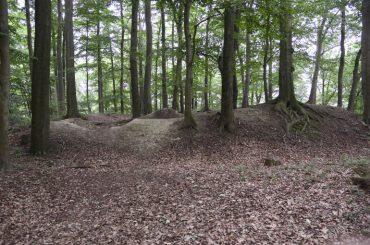 Wallanlage im Ohl: SPD will Bodendenkmal auch als solches kennzeichnen