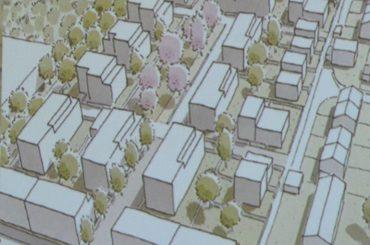 Baugebiet Holzen-Rosen: Die Stadt informierte im Bürgerssaal