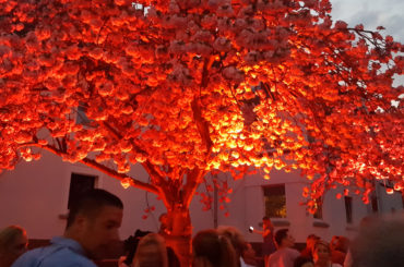 Kirschblütenfest lockte wieder die Menschen in Scharen