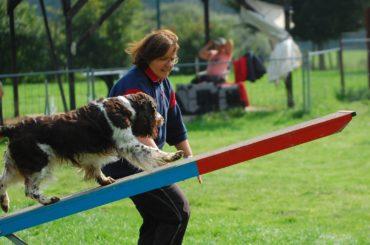 Agility – ein Sport für Mensch und Hund