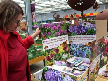 Tipps vom Gartencenter Pötschke zur Rasensanierung, Herbstbepflanzung und mehr