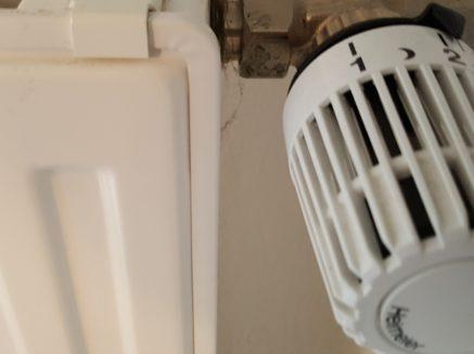 Der Winter naht: Verbraucherzentrale gibt Spartipps für die kühleren Monate