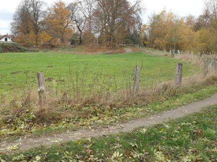 Naturschützer tagten: Skulpturenweg unterhalb des Rohrmeistereiplateaus